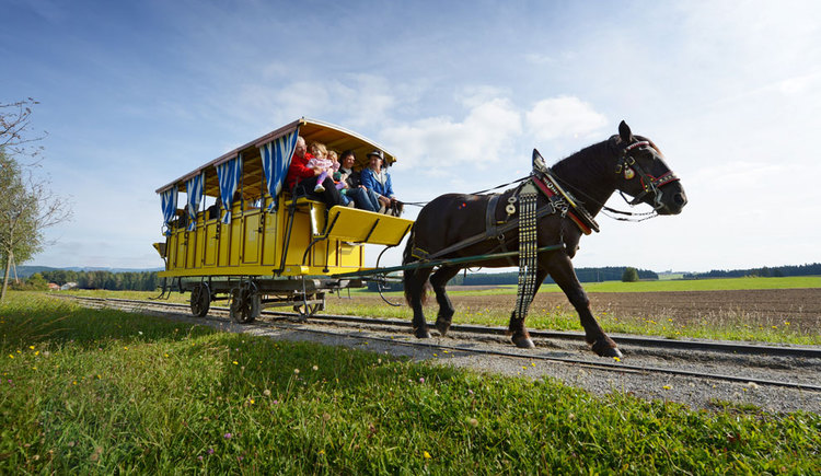 Mühlviertler Pferdeeisenbahn in Rainbach (© OÖ Tourismus/Röbl)