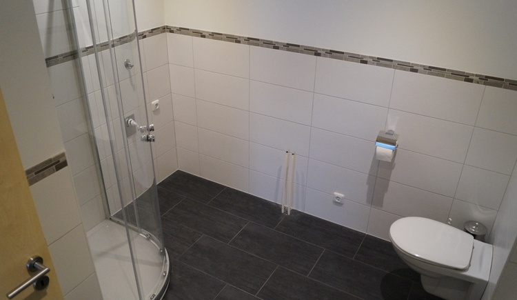 Spacious bathroom with corner shower and toilet