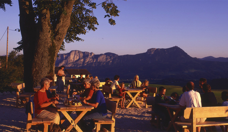 guests sit cosy in the garden, in the background are the mountains. (© Laireiter)