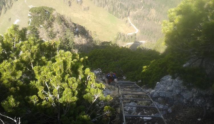 Leiter zum Gipfel. (© Maria Eisl)