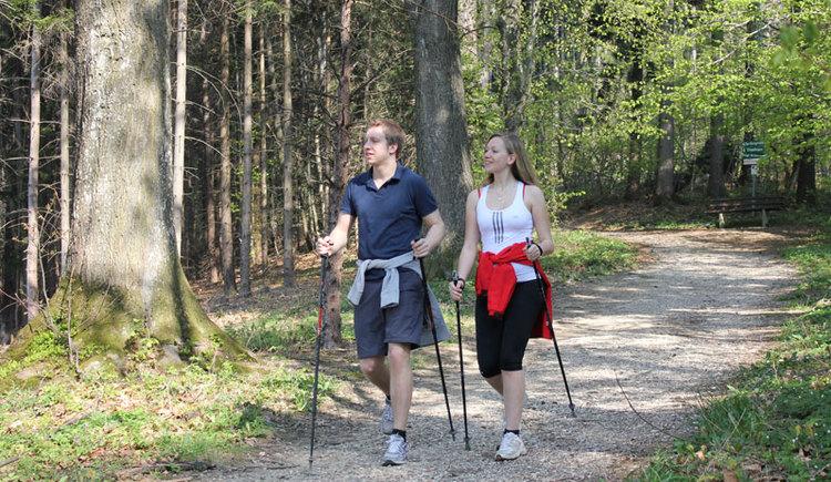 Nordic Walking am Koglberg im Attergau