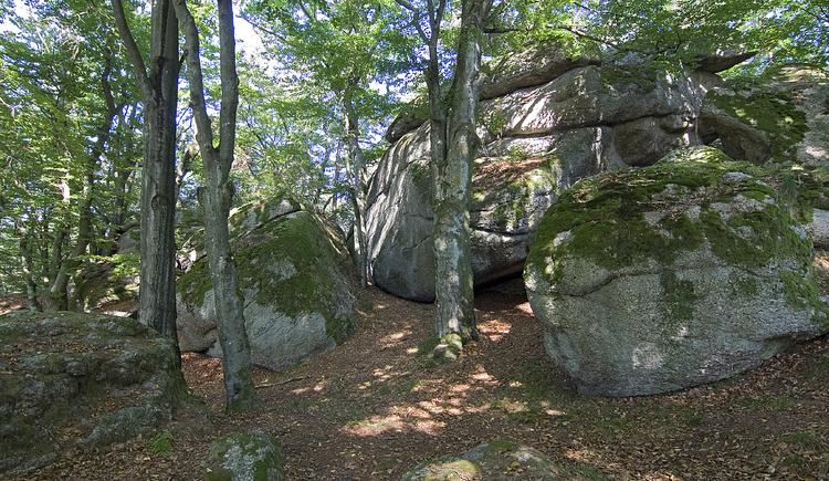 Ein Naturparadies aus Steinen und Bäumen, das Hoanl. (© Naturpark Mühlviertel)