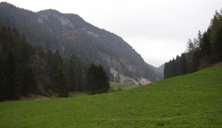 Veichltal (© Land Oberösterreich/H. Kutzenberger)