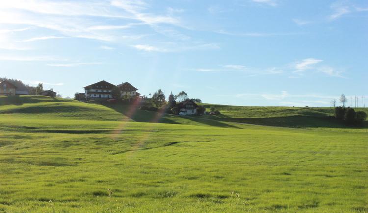 Ausblick Reitweg Vordersee. (© Tourismusverband Faistenau)