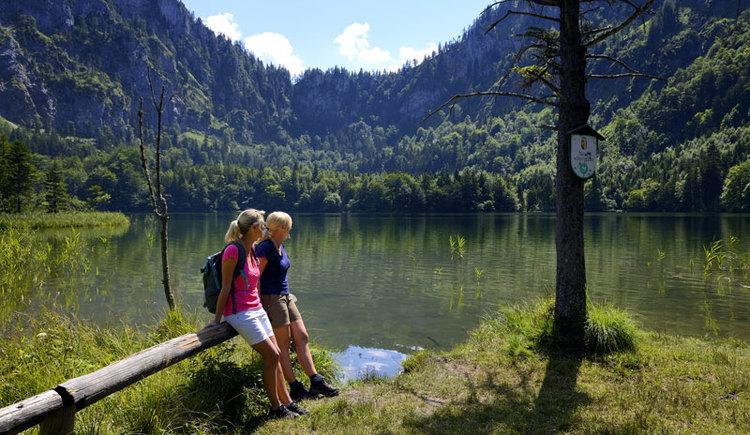 Wandern am Laudachsee (© TVB Ferienregion Traunsee)