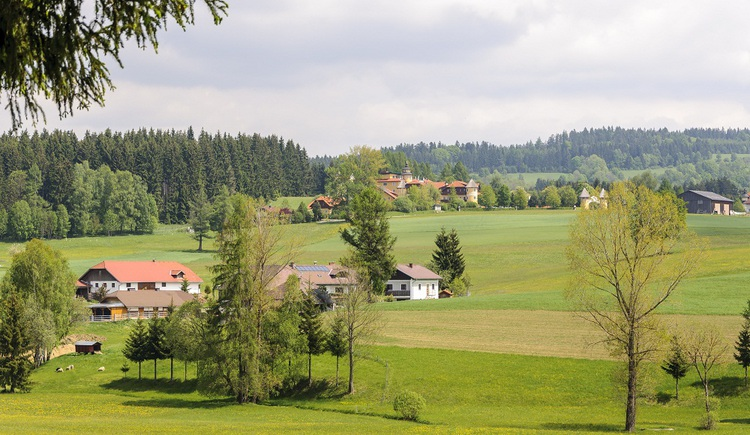 Blick nach Guglwald