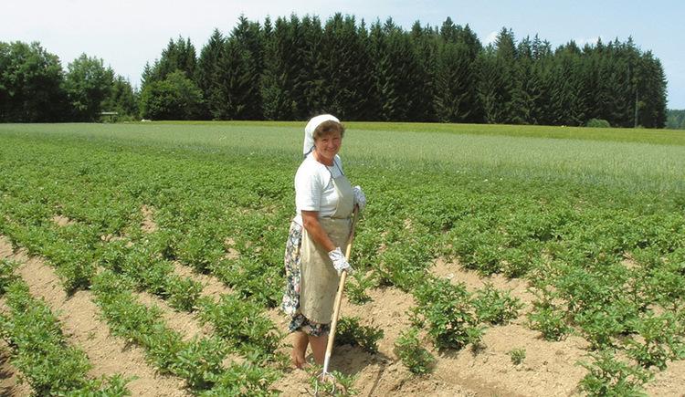 Bäuerin bei der Feldarbeit