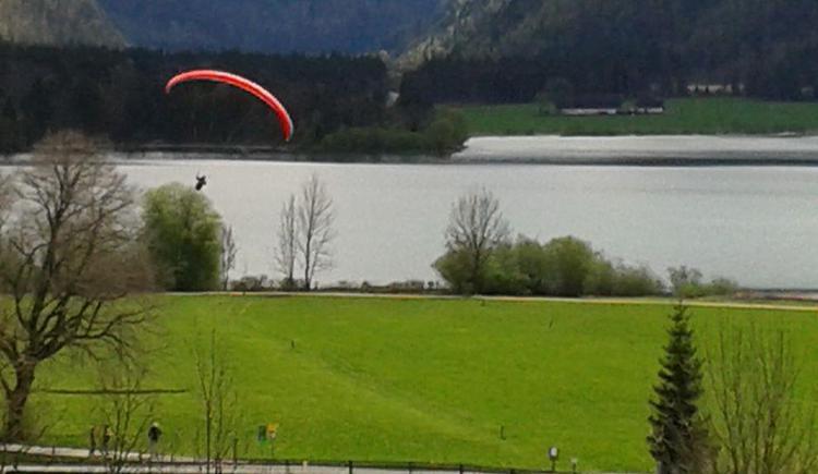 Paraglider beim Landen