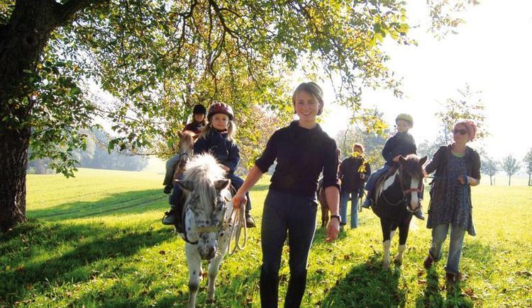 Gasthof-Reiterhof Pichler - Ponyausritt