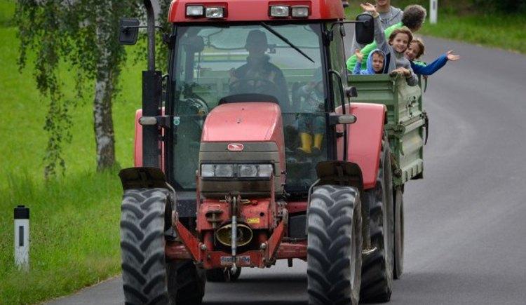 Traktor fahren (© Natschläger)