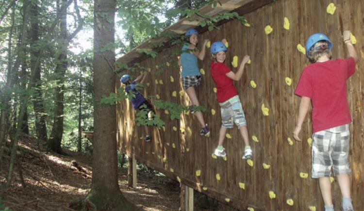 Woodland climbing park in Faistenau