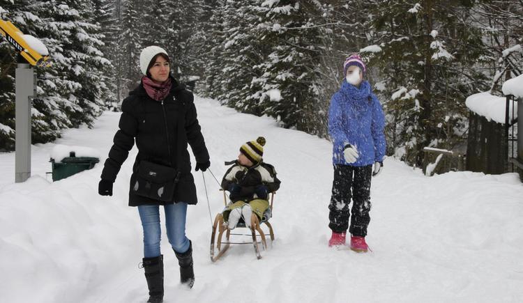Winterspaziergang durch den Wildpark (© Wildpark Cumberland)