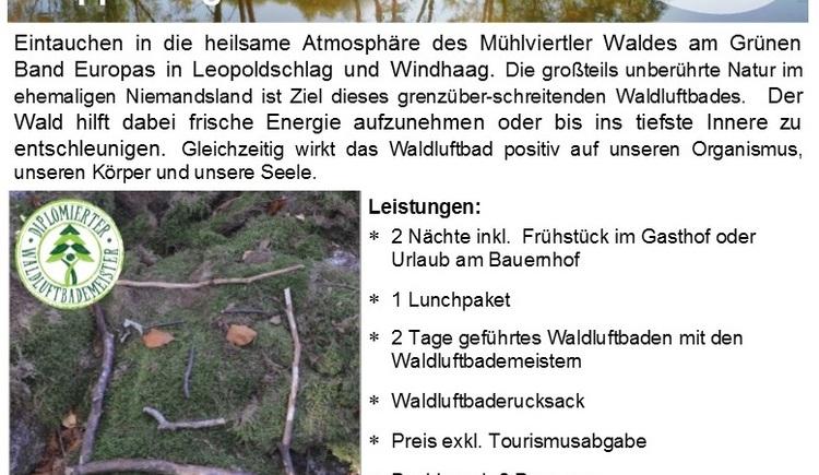 Graser %26 Wiederstein_Package Freiwald_NEU_Flyer (© TVB Freistadt)