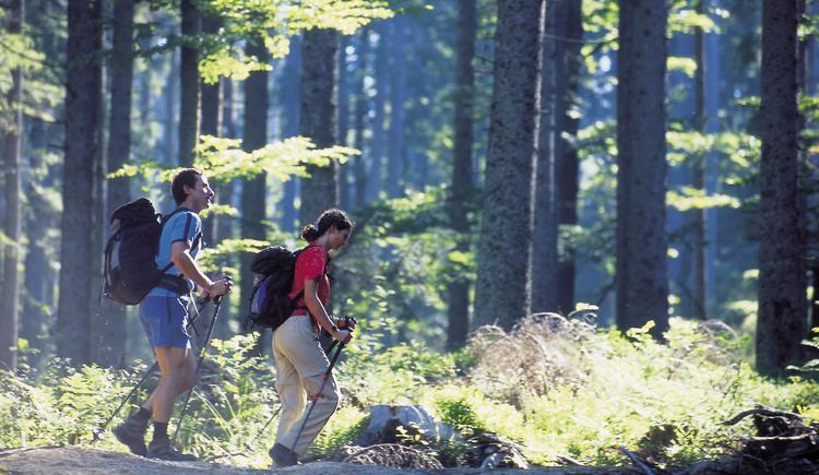 Wandern19.jpeg (© OÖ. Tourismus)