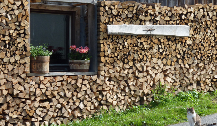 stack of Wood, in the middle a window with flower pots, in foreground is a cat\n