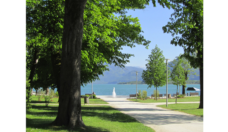 View of the lake promenade, side trees, in the background a fountain and the lake, mountains