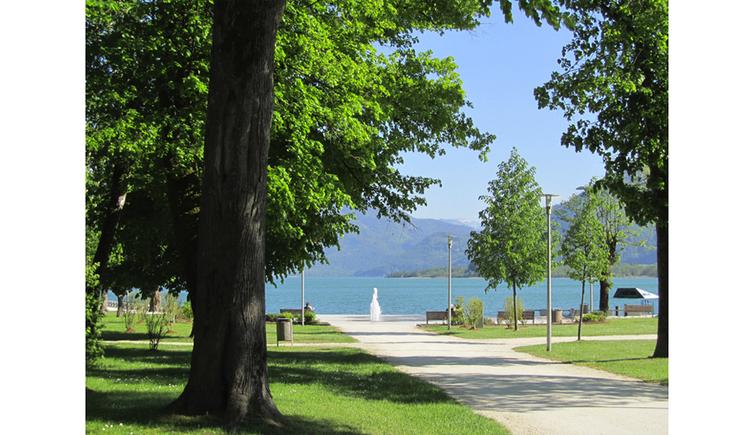 Blick auf die Seepromenade, seitlich Bäume, im Hintergrund ein Springbrunnen und der See, Berge