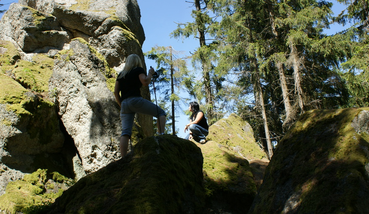 Wandern. (© Verband Mühlviertler Alm)