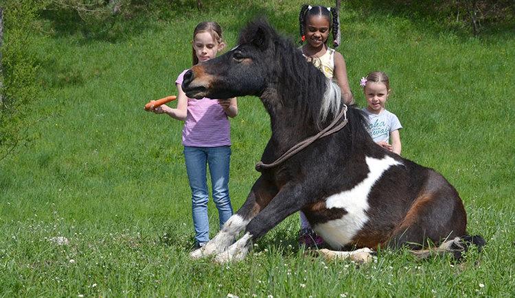 Pferd mit Kindern: HTC Hellmayr