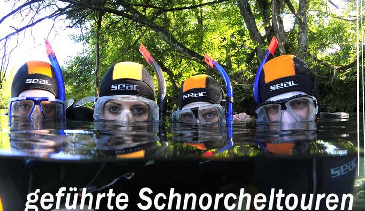 schnorcheln (© Gregor Bockmüller)