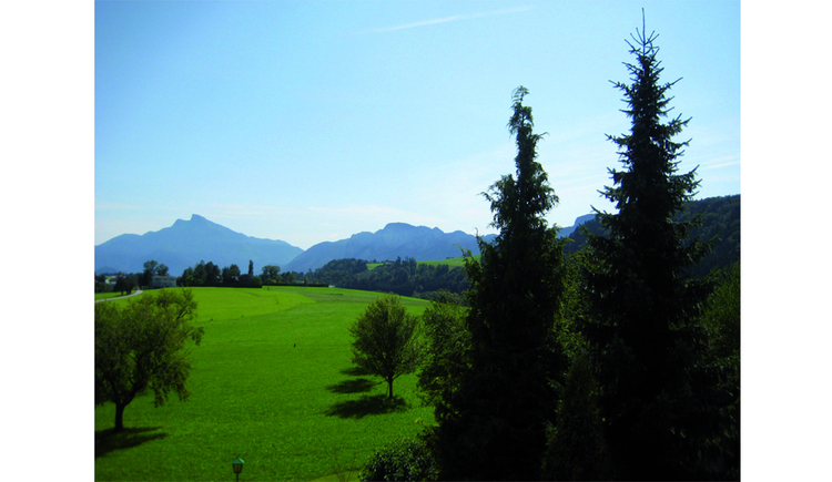 View at the landscape, trees, in the background the mountains. (© Pöllmann)