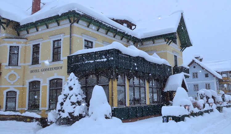 Here you can see the wintery exterior sideview of Hotel Goisererhof and snowy tree. (© Hotel Goisererhof)