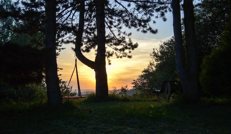 Abendsonne (© Kristina Gould)