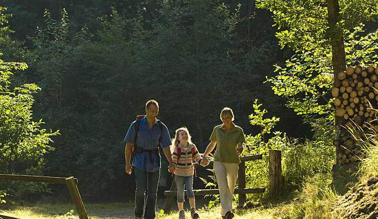 Wandern in Oberoesterreich (© OÖ Tourismus/Erber)