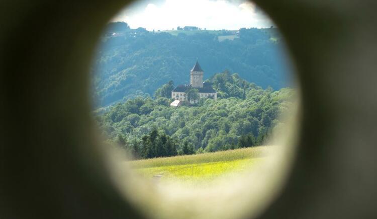 Blick auf das Schloss Neuhaus an der Donau (© WGD Donau Oberösterreich Tourismus Gmbh / flickr.com, CC-BY-ND-2.0)