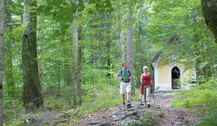 A man and a woman are hiking in the forest. (© www.mondsee.at)