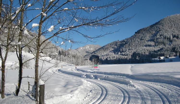Oberascher Trail (© Tourismusverband Faistenau)