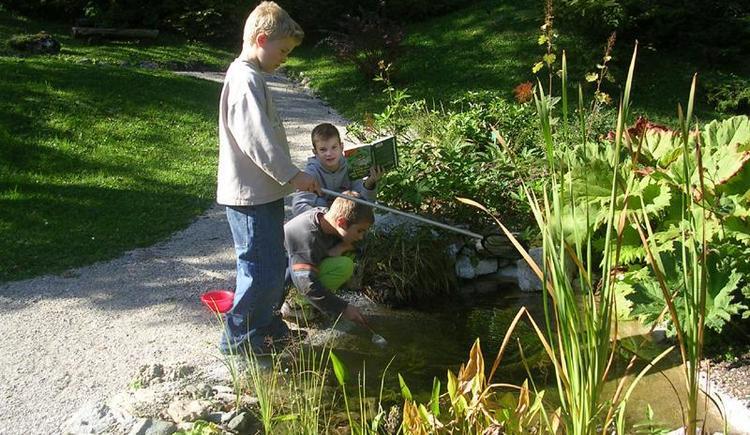 Kinder im Alpengarten