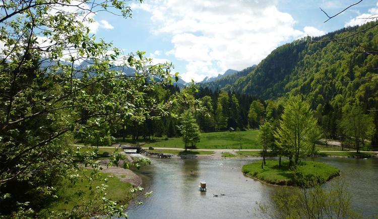 Herrliche Landschaft (© Wildpark Cumberland)