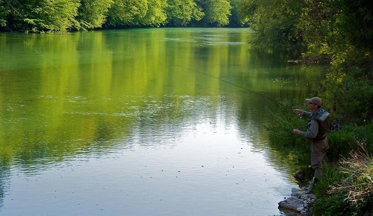 Fliegenfischen am Steyr Fluss in Grünburg
