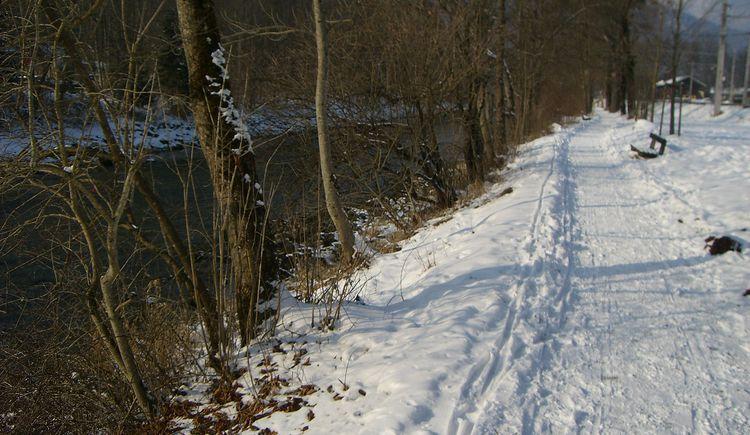 Traunreiterweg_Winterwanderweg_Januar_2010 (3).JPG
