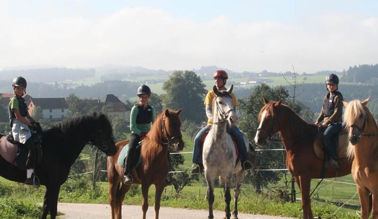 Reitergruppe Pferdehof Koaser Minerl. (© Pferdehof Koaser Minerl)