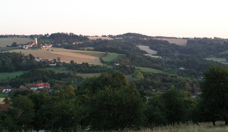 Panoramaweg.JPG (© Naturpark Obst-Hügel-Land)