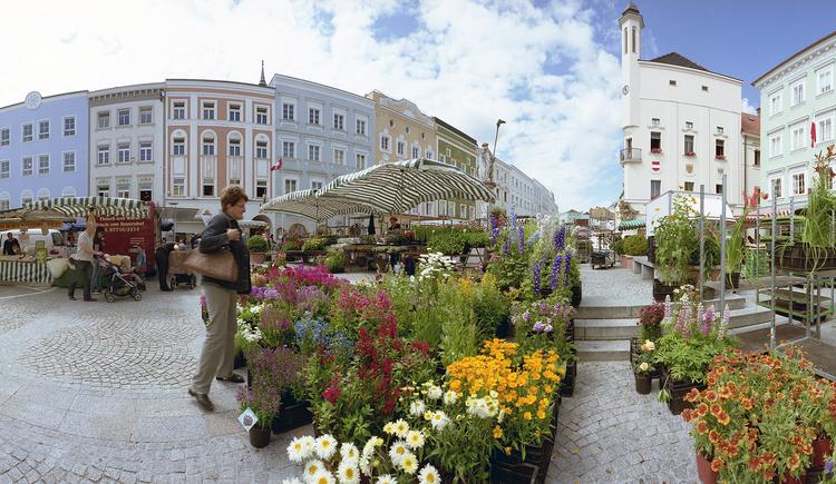 Grünmarkt Ried im Innkreis (© Stadtmarketing Ried)