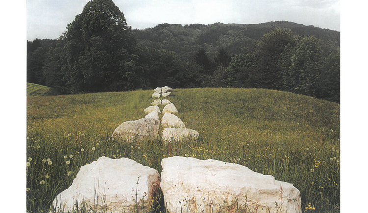 Steine in der Wiese, im Hintergrund der Wald