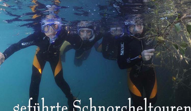 schnorchel 2 (© Gregor Bockmüller)