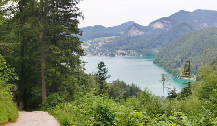 Blick über den Wolfgangsee (© WTG)