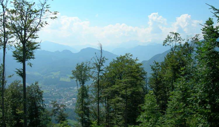 Bad Ischl im Blick (© Oberösterreich Tourismus / green-solutions)