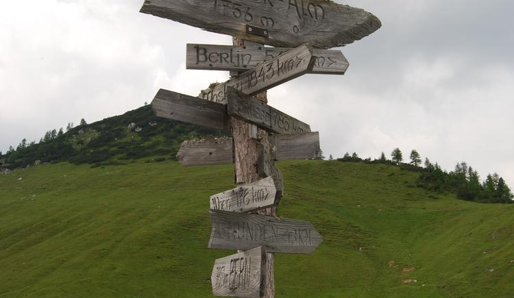 Wegweiser in die verschiedneen Richtungen des Lebens
