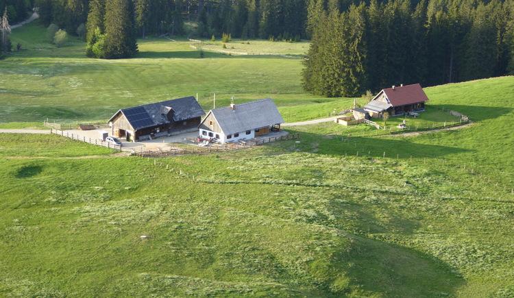 Blick auf die Ebenforstalm. (© TV Nationalpark Region Ennstal - Sandra Kraushofer)