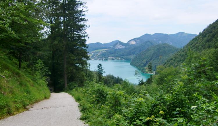Ausblick auf die Bucht in Fürberg. (© WTG)