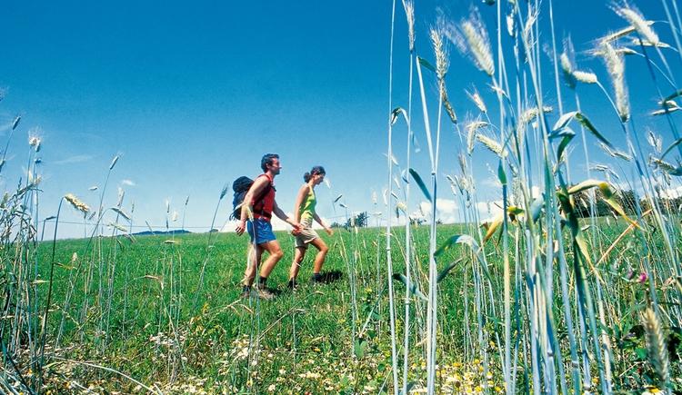 Nordic Walking. (© Nordic Walking)