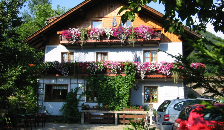Summer holiday at bed and breakfast Sydler in Bad Goisern at Hallstatt Lake