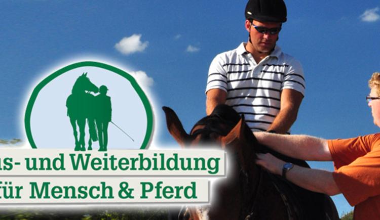 Aus- und Weiterbildung für Mensch und Pferd (© Reit-Erlebnis-Akademie Mühlviertler Kernland)
