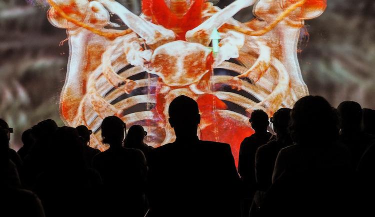 Reise in den Körper des Menschen. (© Martin Hieslmair)