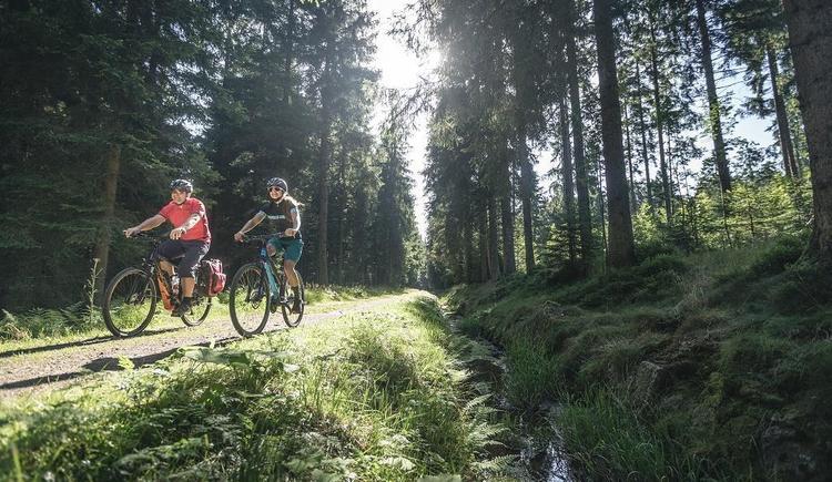 Radfahren am Schwarzenbergischen Schwemmkanal (© OÖ Tourismus GmbH   Moritz Ablinger)